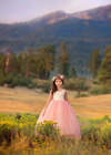 The Ophelia Dress: Champagne Bodice and Rose Skirt