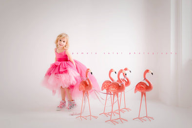 Rent The Pink Flamingo Gown - Size 4: fits 3-6