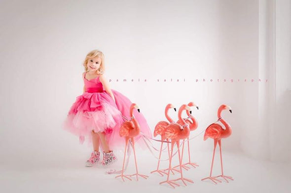 The Pink Flamingo Gown