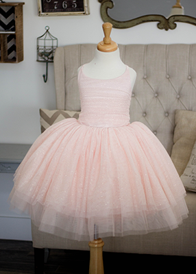 The Prima Ballerina Gown