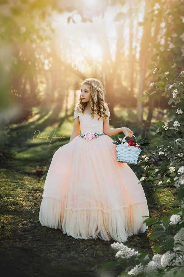 CLEARANCE SALE: The Georgia Peach Gown: size 10, fits sizes 8-12