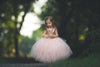 The Juliet Dress: Blush Sequin Bodice and Blush Tulle