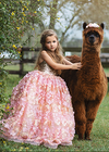 Rent The Naomi Gown - Size 7: fits 5-9yrs