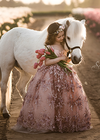 The Cosette Gown in Dusty Rose