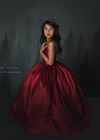 RENT The Hadley Gown in Red - Size 5, fits sizes 3-7