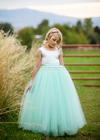 The Juliet Dress: Ivory Satin Bodice with Mint Green Tulle