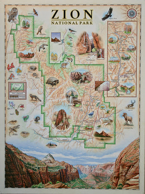 Xplorer Maps Releases Hand-Drawn Zion National Park Map