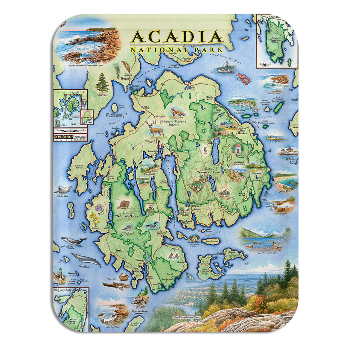 Acadia National Park Serving Tray