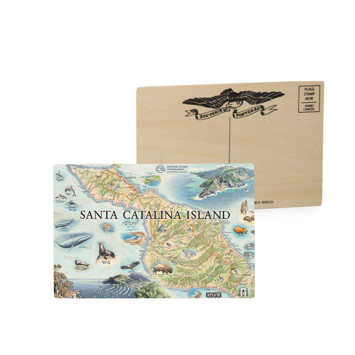 Santa Catalina Island Wood Postcards