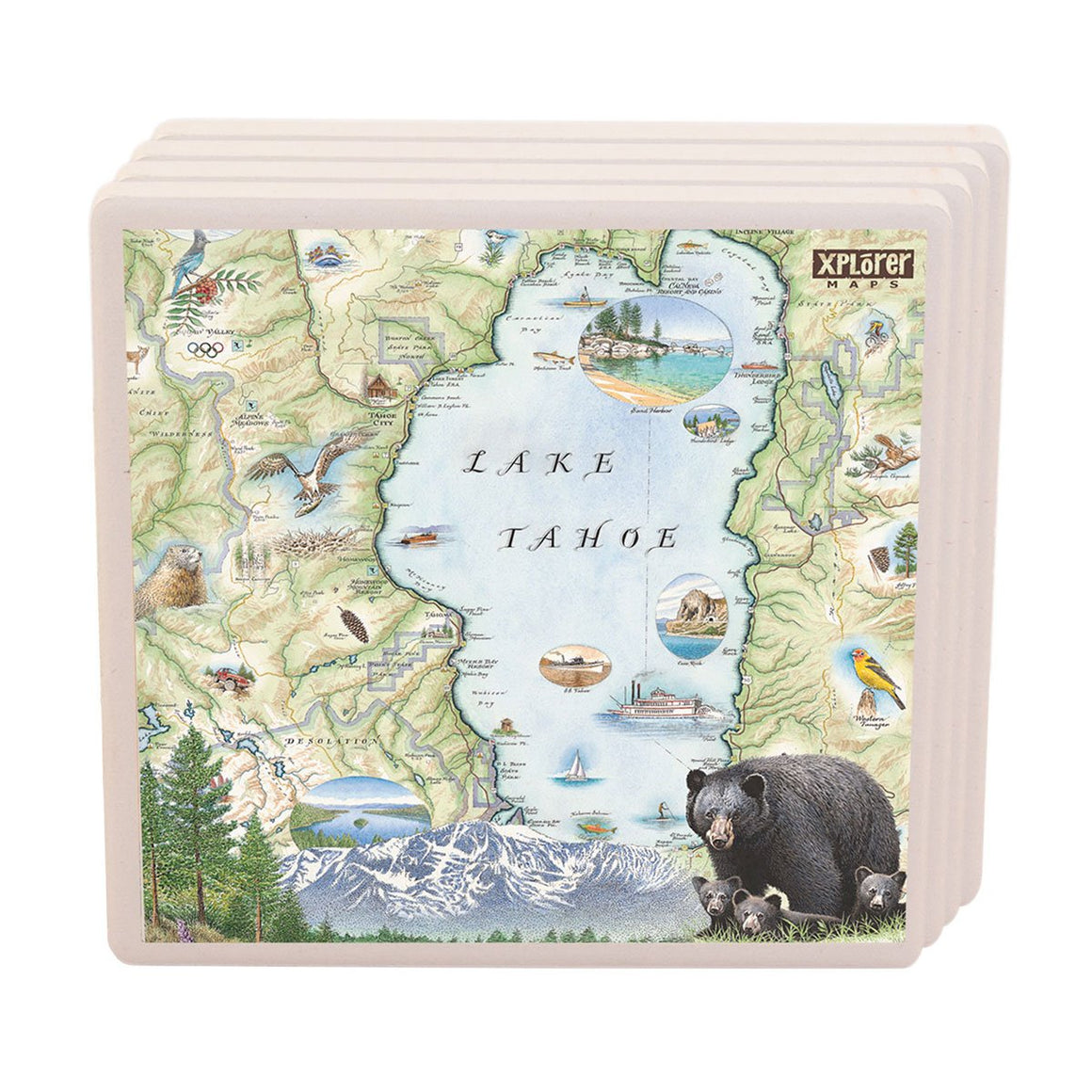 Lake Tahoe Coasters