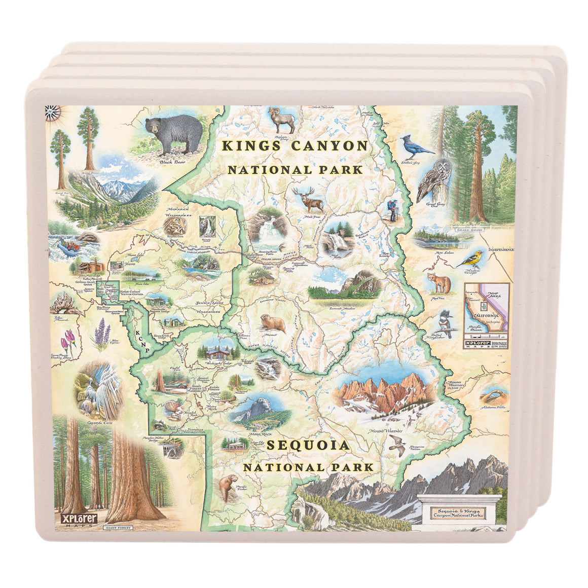 Sequoia & Kings Canyon Ceramic Coasters