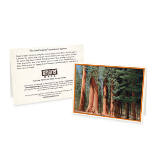 Yosemite Greeting Cards