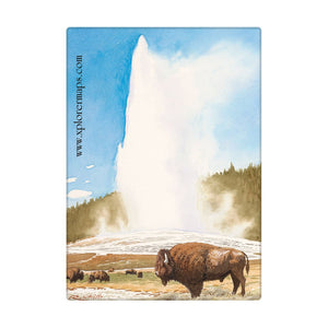 Yellowstone Magnets