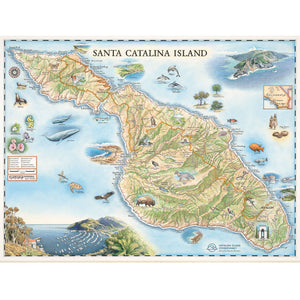 Catalina Island Map Art