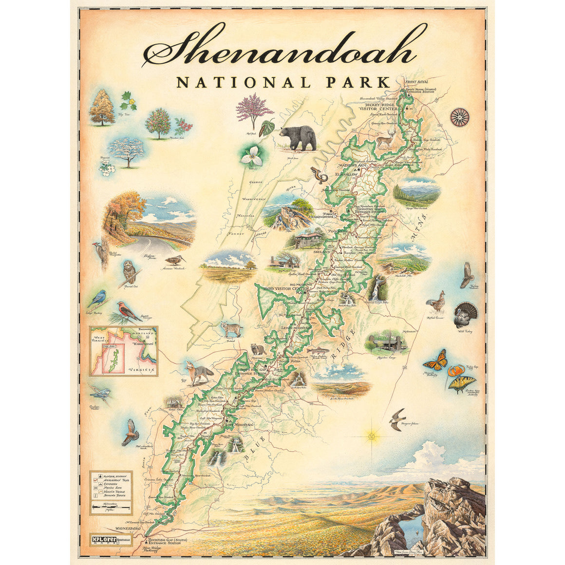 "Shenandoah Map 24"" x 18"""