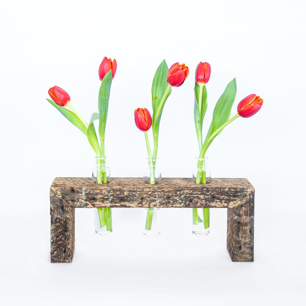 stem vase display + vault furniture