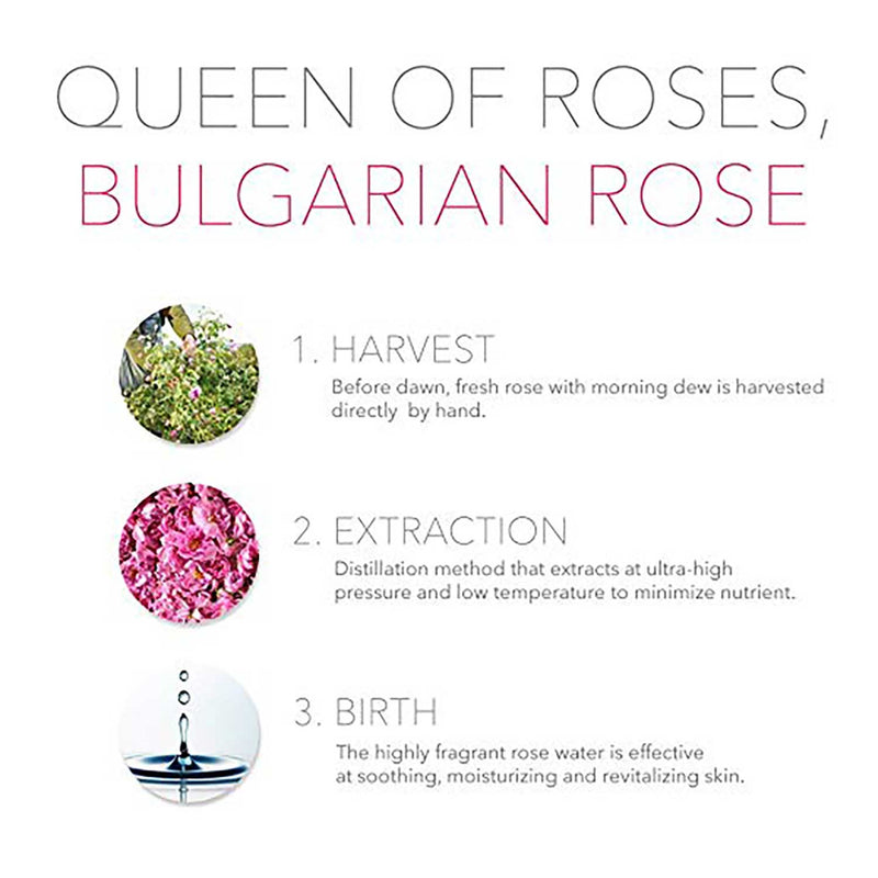 [ESSENHERB] Bulgarian Rose Sleeping Pack