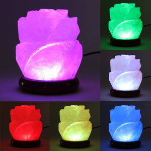 Air Purifier Salt Lamp-USmeditate