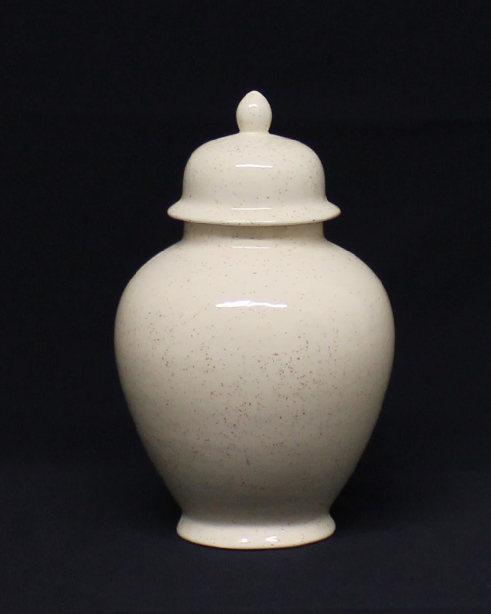 Hancrafted Ceramic Urn - Speckled - Medium