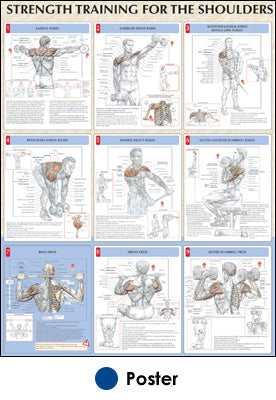 Strength Training for the Shoulders Poster