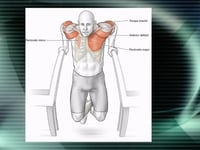 Bodyweight Strength Trng Anatomy-video thumbnail
