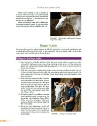 Bucklin - Putting on the rope halter