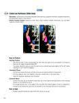 Cable Lat Pull-Down and Row
