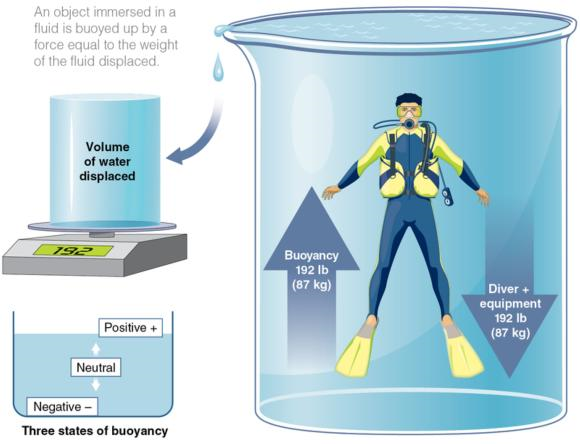 Figure 2.8 Principles of buoyancy.
