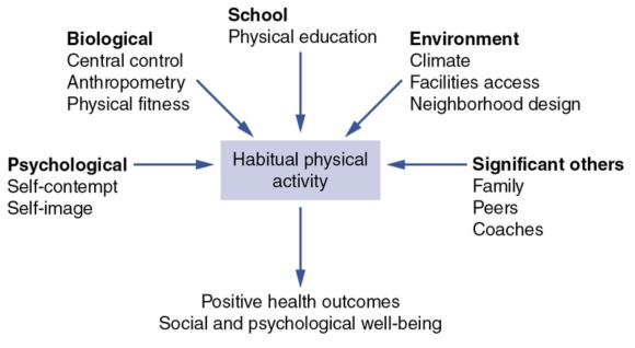 Figure I.1 The basic schema by which multiple determinants might act to dictate physical behavior for health outcomes in humans.