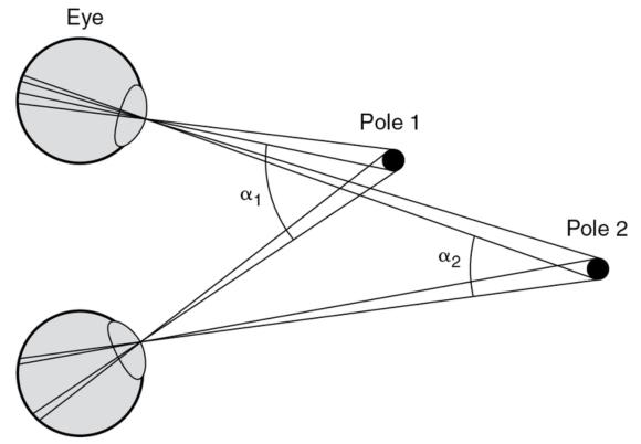 Figure 5.4 The detection of distance: The angles of the light rays from the distant pole change less than those from the near pole as the head and eyes are moved.