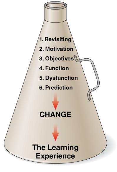 Figure 13.3 The frontloading bullhorn: single questions asked before the learning experience.