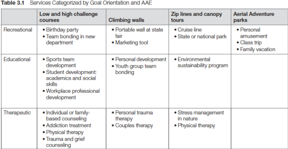 Table 3.1 Services Categorized by Goal Orientation and AAE
