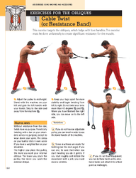 Exercises for the obliques