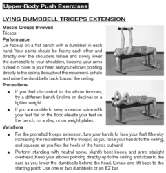 Lying Dumbbell Triceps Extension