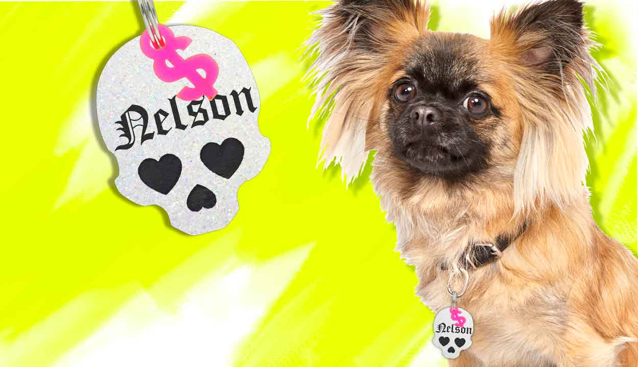 Shop the original Rebel Dawg customizable pet ID Tags for dogs and kitties! Personalize yours for free today. Jingle free, lightweight, fashionable and fun. Choose from over 15 exclusive colors, ton of shapes, and a free mini charm. Shop now! by rebeldawg.com