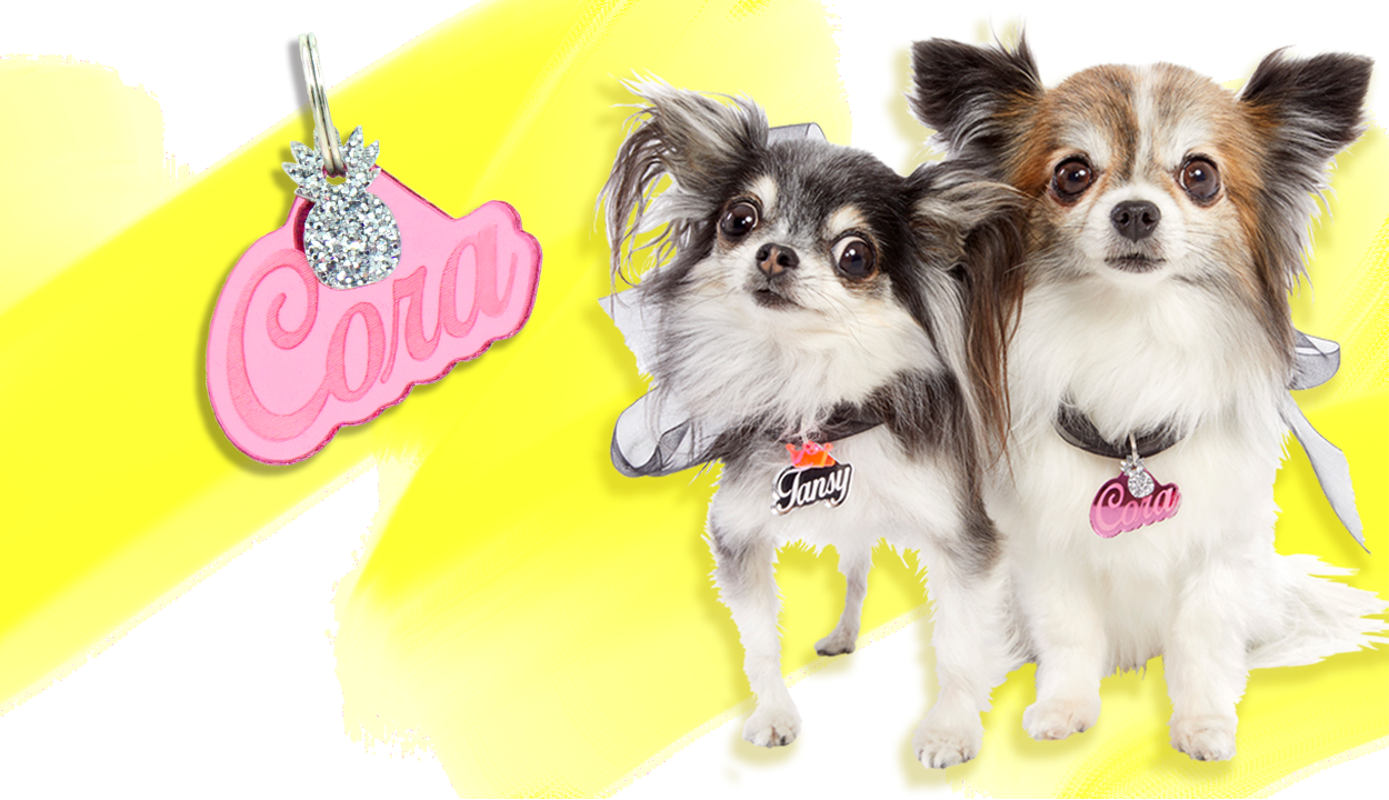Check out Rebel Dawg's exclusive hand-poured acrylic nameplate Dog ID Tags. Feature your pet's name on their personalized ID Tags in the color and style of your choice. by rebeldawg.com