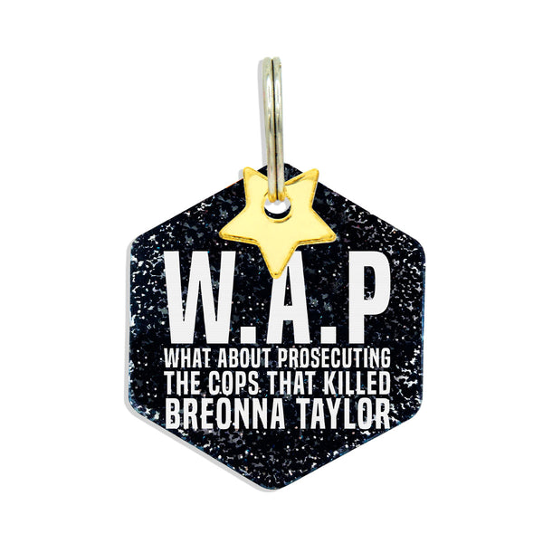 WAP what about prosecuting the cops that killed Breonna Taylor