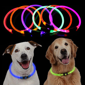 Pets Dogs Puppies Cats Glow Light Adjustable Collar Night Light Safety Collar