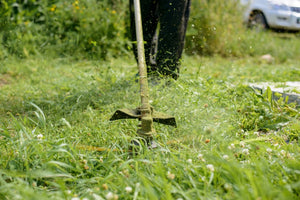 Five Ways to Make Your Lawn Lush