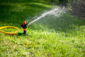 Choosing the Right Sprinkler System
