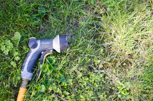 hose sprayer on lawn