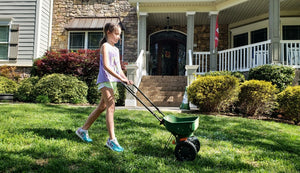 Tips to Reseed Your Grass for Spring Growth