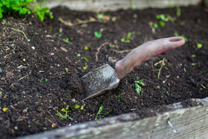 dirt in gardening bed with shovel
