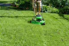 Man cutting the grass on a summer day with a push lawnmower