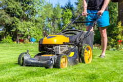 Man mows grass with lawn mower on sunny morning in garden