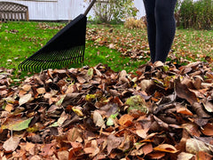 Woman raking leaves in Autumn
