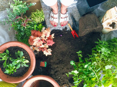 Woman's feet near soil with plants
