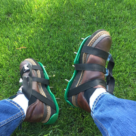 Person Wearing Aerating Spike Shoes on Green Grass