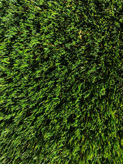 Up close image of fresh green lawn