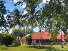 green grass with palm trees and house